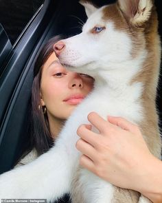 Leo DiCaprio's girlfriend Camila Morrone shows off husky pup Jack Cute Husky, Husky Puppy, Husky Tumblr, Animals And Pets, Cute Animals, Camila Morrone, Cute Baby Dogs, Puppy Eyes, Cute Friends