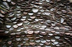 In several wooded areas around Cumbria and Portmeirion in the UK, people have been hammering small denomination coins intro trees for centuries. The practice is said to date back as far as the early in Scotland, where ill people would stick florins Cumbria, Oh The Places You'll Go, Places To Visit, Reine Victoria, Queen Victoria, Money Trees, Belleza Natural, Lake District, Looks Cool
