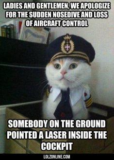 Captain Kitten#funny #lol #lolzonline