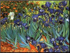 Van Gogh blue flower landscape DIY oil painting by numbers on canvas hand painted coloring by numbers for home decor Iris Painting, Painting Prints, Fine Art Prints, Canvas Prints, Painting Canvas, Vincent Van Gogh, Van Gogh Wallpaper, Hd Wallpaper, Flores Van Gogh