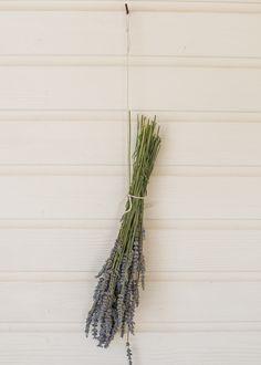 How To Dry Lavender + DIY Lavender Linen Spray from HenryHappened