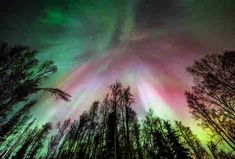 Chena Hot Springs, Alaska hot springs, aurora, dog sledding