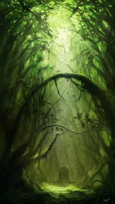 Beautiful forest passage