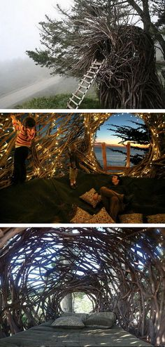 Human Nests- We are about 45 min away from Sur... Pretty skeptical that I could handle this.