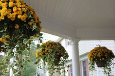 Fall Hanging Baskets Container Plants Front Porch Planting Decor Garden Ideas Landscaping Thanksgiving