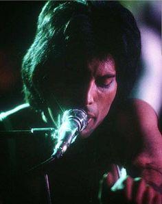 Mary Austin Freddie Mercury, Queen Freddie Mercury, Brian May, John Deacon, Queen Ii, Roger Taylor, Somebody To Love, Queen Band, Killer Queen
