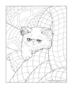 171 Best Cat Coloring images | Coloring pages, Colouring pages ...
