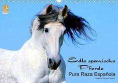 Edle spanische Pferde - Pura Raza Espanola - CALVENDO Kalender von Ramona Dünisch - #kalender #calvendo #calvendogold #pferde #tierfotografie