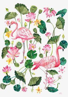 Ilustração,Cartoon,Pintados à mão,Flamingo,Animal,Aquarela,Plantas