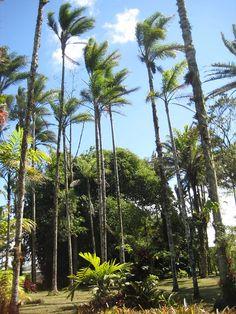 Cartago Costa Rica