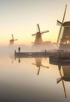 Windmills of my mind.