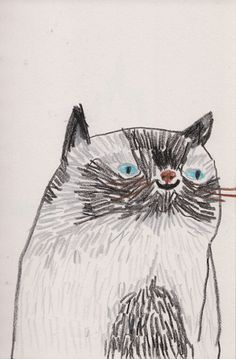 This reminds me of my old Siamese cat, Edward.  He was very fat and very friendly. Prrrrt! (drawing by Tom Edwards.)