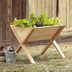 Vegetable Gardening edible-garden-raised-bed-vegetable-wedge-gardenista - Call it the weekend renter's edible garden. The clever design of a wooden Veg-Wedge raised bed allows you to grow herbs and cherry tomatoes at your summer Raised Garden Bed Plans, Building A Raised Garden, Raised Beds, Raised Patio, Raised Vegetable Gardens, Home Vegetable Garden, Vegetables Garden, Vegetable Planters, Vegetable Bed