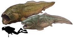 "Prehistoric taxonomie | Titanichthys agassizi (""giant fish"")..."