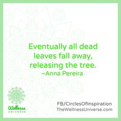 Enjoy The Wellness Universe Quote of the Day by Anna and find more inspiration on her page. Here is her expanded thought…