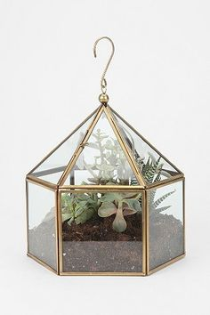 With this Hexagon Terrarium by #urbanoutfitters I could bring my love of plants and gardening right into the living room! I would plant succulents in shades of purple to compliment the plum in the tufted sofa and the Tree of Life Tapestry , not to mention the brass offsets the other brass elements in the room.