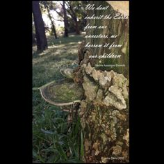 I just love this #NativeAmerican #quote I edited into this #pic I took of a #pretty #horseshoe