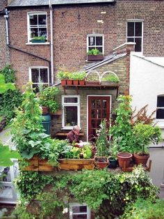 Balcony garden in the UK  #Balcony, #Guerrilla, #Uk
