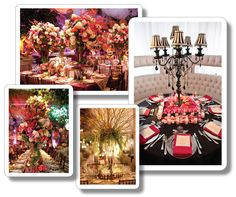 Win a dream wedding design by David Tutera!