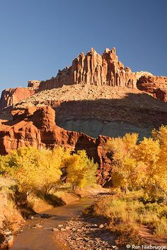 The Castle rises above Sulpher Creek, Capitol Reef National Park, Fruita, Utah by Ron Niebrugge..