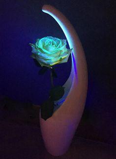 ⭐NEW : Kit Plante Luminescente Dispo ici ➡ http://ow.ly/THut30bQcnQ Ce kit rend n'importe quelle plante ou fleur luminescente. Oui comme dans Avatar ! Fête des mères insolite ?
