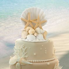 """This resin seashell cake top makes the perfect decoration for destination or beach-themed weddings. Size: 4"""" wide, 5"""" tall."""