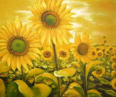 100% HANDMADE MUSEUM QUALITY:SUNFLOWER OIL PAINTING