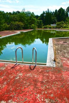 abandoned pool in the forest