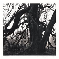 "Michael Kenna, ""Le Désert de Retx, Study 13, France"" (1988) 