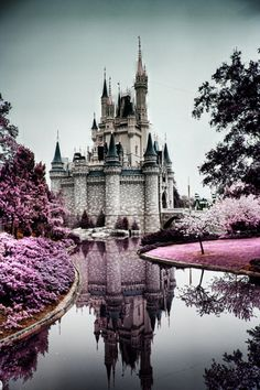 The Disney castle will always be scenery Beautiful Castles, Beautiful Places, Beautiful Scenery, Chateau Disney, Cinderella Castle, Princess Castle, Pink Castle, Beast's Castle, Fairytale Castle