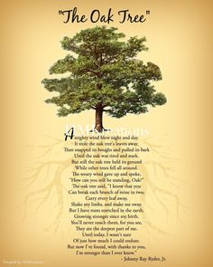 The Oak Tree Poem Wall Art Nature Wall Art Encouraging Tree Poem, Nature Quotes, Art Nature, Nature Tree, Now Quotes, Movie Quotes, Quotes To Live By, Tree Quotes, Inspirational Wall Art