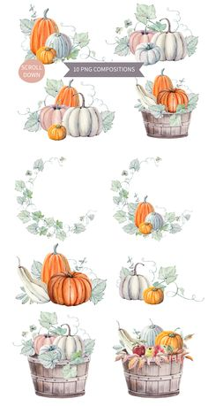 Hello Pumpkins watercolor set by Lemaris on @creativemarket