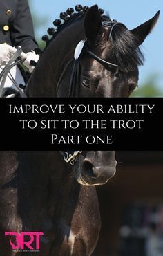 Improve your ability to sit to the trot. Article explaining in detail the how to