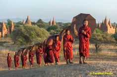 Traveling monks in Bagan, Myanmar.