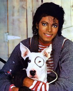 Photo of Sweet for fans of Michael Jackson 10516643 Photos Of Michael Jackson, Michael Jackson Bad Era, Paris Jackson, Janet Jackson, Joseph, Liberian Girl, Cute Bulldogs, Legendary Singers, Pop Photos