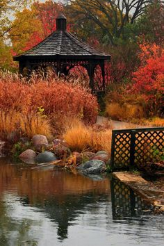 Cantigny Park pond and gazebo in Wheaton, Illinois Autumn Nature Beautiful Places, Beautiful Pictures, Autumn Scenes, Seasons Of The Year, Fall Pictures, Beautiful Landscapes, Autumn Leaves, Parks, Pergola