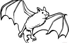 Bats Colouring Pages
