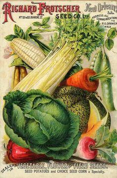 Vintage seed ad art