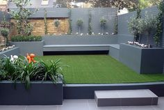 Raised beds grey colour scheme artificial grass agapanthus olives porcelain grey tiles yellow stock brick walls grey Floating bench lighting Wandsworth Battersea London