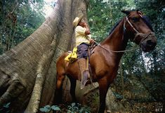 The rainforest is filled with wonders! Don't miss your chance of enjoying the best of it while you are on a horseback riding! Travel to Costa Rica with GioTours! www.giotours.com #giotours #costarica #travel #traveller #vacation #vacations #vacaciones #horse #horses #rainforest #woods #selva #caballo
