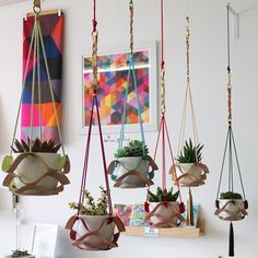 Our new plant hangers looking great in the studio/shop