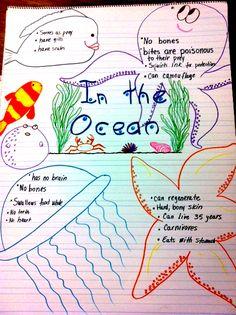 Ocean anchor chart