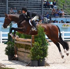 proof that hunter riders can have decent, effective eq AND stay off their horse's neck and out of their way.