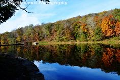 Fall Colors, Fall, Digital Download, Photo, Photography, Colors, Water, Trees by LittleMomentsPhotos on Etsy