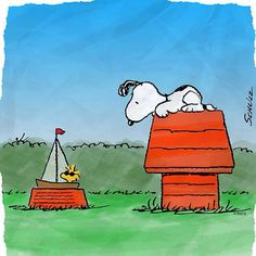 Snoopy and Woodstock. Chilling on their houses. I love this pic. Life at its finest #snoopy #adventuresofmysnoopy on facebook!