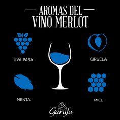 Aromas del Vino Merlot, conoce más de este exquisito vino ♥