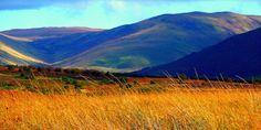 Machrie Moor, Isle of Arran, North Ayrshire, Scotland by Bearded Iris