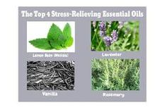 Need to reduce your stress? Turn to nature's finest!