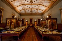 The lovingly restored Santos Museum of Economic Botany is one of the Adelaide Botanic Garden's treasures. Reopened to the public in 2009 after a year-long restoration, it is the last purpose-built colonial museum in the world. The building features high ceilings, ornate Victorian detail, historic cabinet displays and a classical Greek-style exterior.