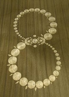 8    Infinity~ hippiewitch: i ♥ crop circles!
